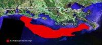 1993 Hypoxia Map