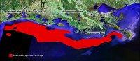 2001 Hypoxia Map
