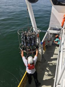 Research scientist Matt Kupnick guides a water sampler equipped with multiple sensors onto the R/V Pelican in the Gulf of Mexico. Photo Credit: R. Eugene Turner, LSU