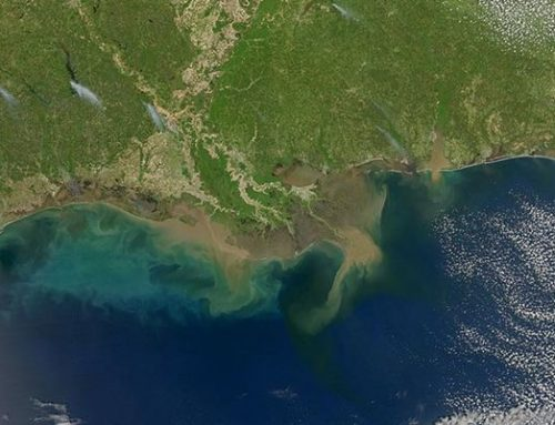 Gulf of Mexico 'dead zone' will persist for decades