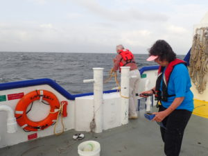 Finding right salinity in Southwest Pass