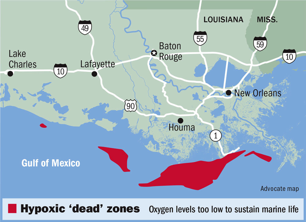 Gulf of Mexico 2018 'dead zone' smaller than expected, but still as Map Of The Gulf Mexico on the rocky mountains map, gulf of mexico ocean depth map, the country of mexico map, gulf of mexico and united states map, chesapeake bay map, gulf of mexico cuba map, gulf of campeche mexico map, gulf of mexico coastal map, the atlantic coastal plain map, gulf mexico water depth map, the norway map, the gulf of japan, the indonesia map, the swamp map, gulf of mexico floor map, pacific ocean map, the valley of mexico map, the 50 states map, gulf of mexico on map, the city of mexico map,